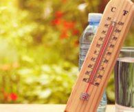 Aşırı sıcak organ kaybına neden oluyor