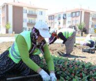 Kadın İşçiler Bolu'yu Güzelleştiriyor