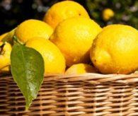 Limon böbrek taşı oluşumunu önlüyor