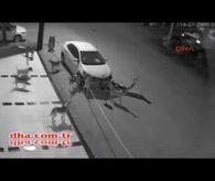 Sokak Köpekleri Arabayı Parçaladı – haberi olan?