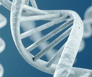 Gen testleriyle tıp kişiselleşiyor
